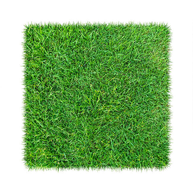 Green artificial grass samples