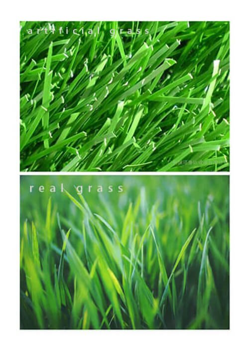 real grass vs artificial grass